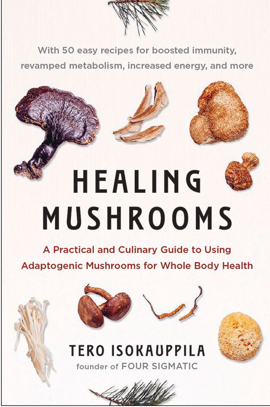 healing-mushrooms